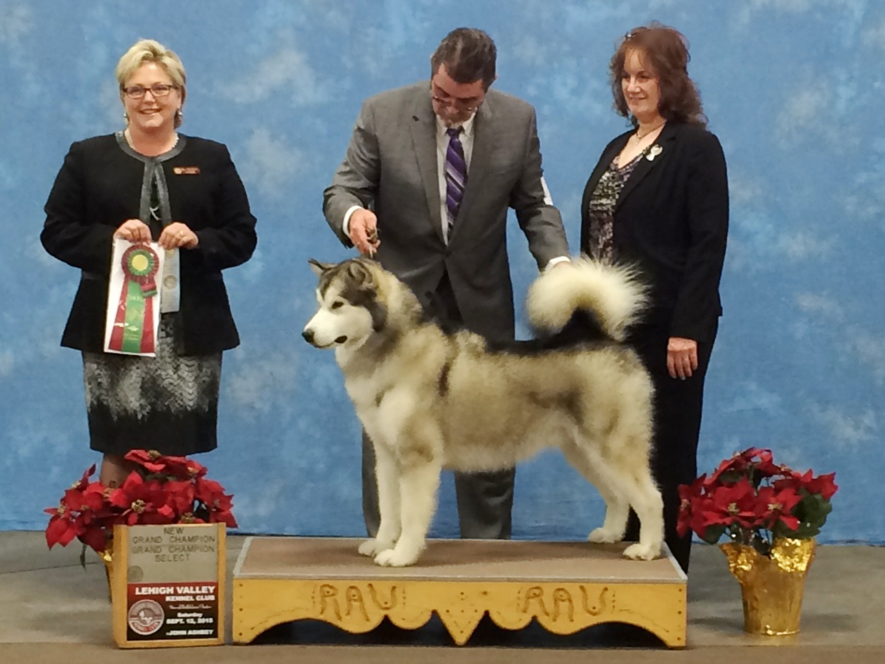 Indy GCH Allentown PA